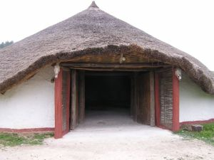Porch of large thatched round house