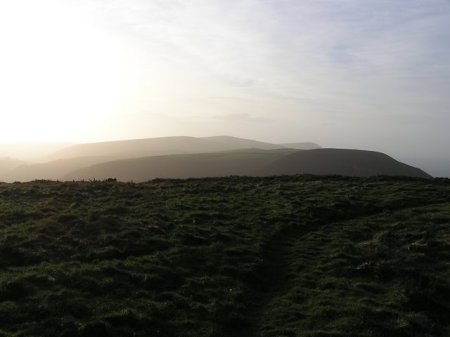 View of clifftop fields in sunset