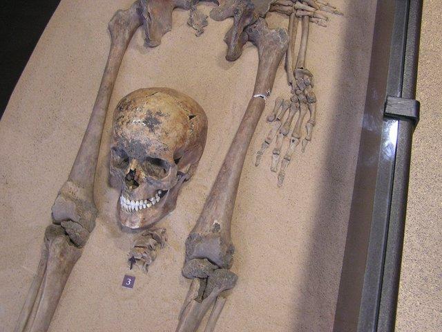 Lower half of skeleton with skull between legs