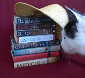 Cat invades photo of books under straw hat