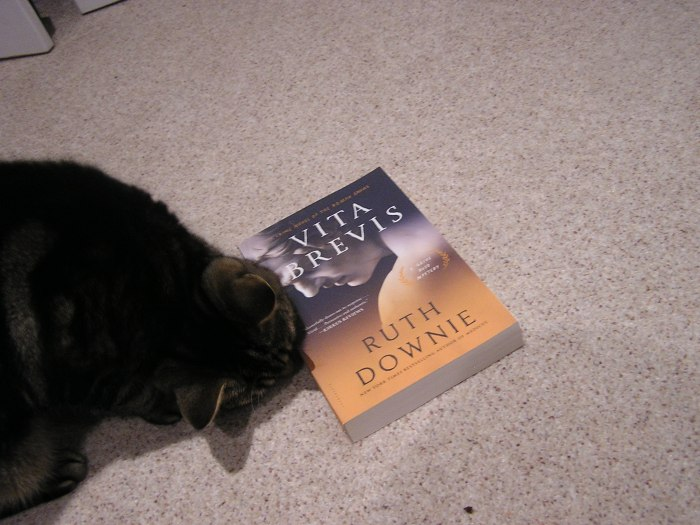 Cat smelling book.