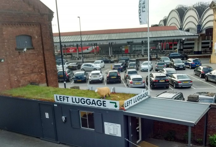 Model sheep on 'green' roof of portacabin over station Left Luggage sign