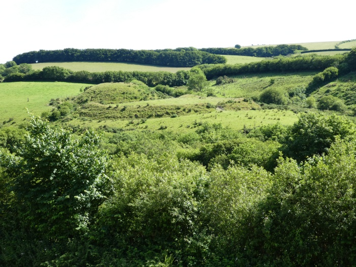 Green hillside with earthworks beyond trees