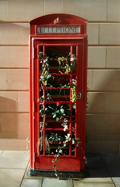 Red telephone box decorated with ivy
