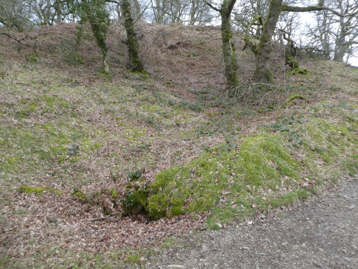 Dip in wooded hillside with small hole just visible at the bottom.