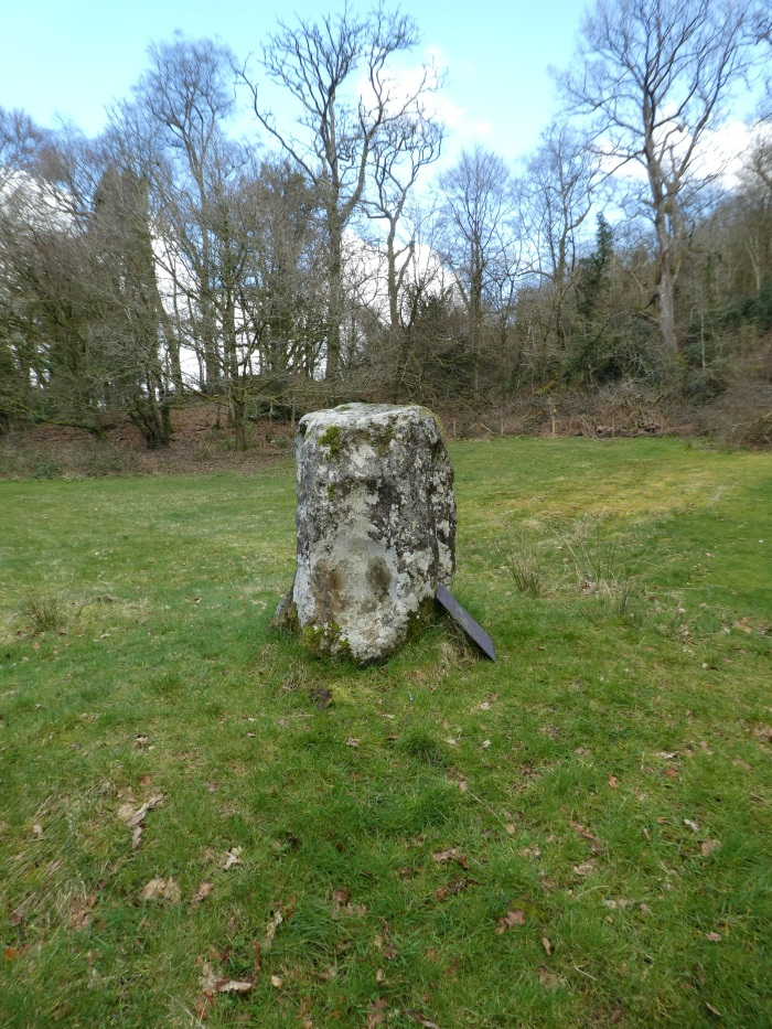 Tall rectangular stone set upright in the ground with deep indentations in the flat face.